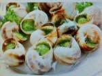 Escargots surg lucorum 4 dzs